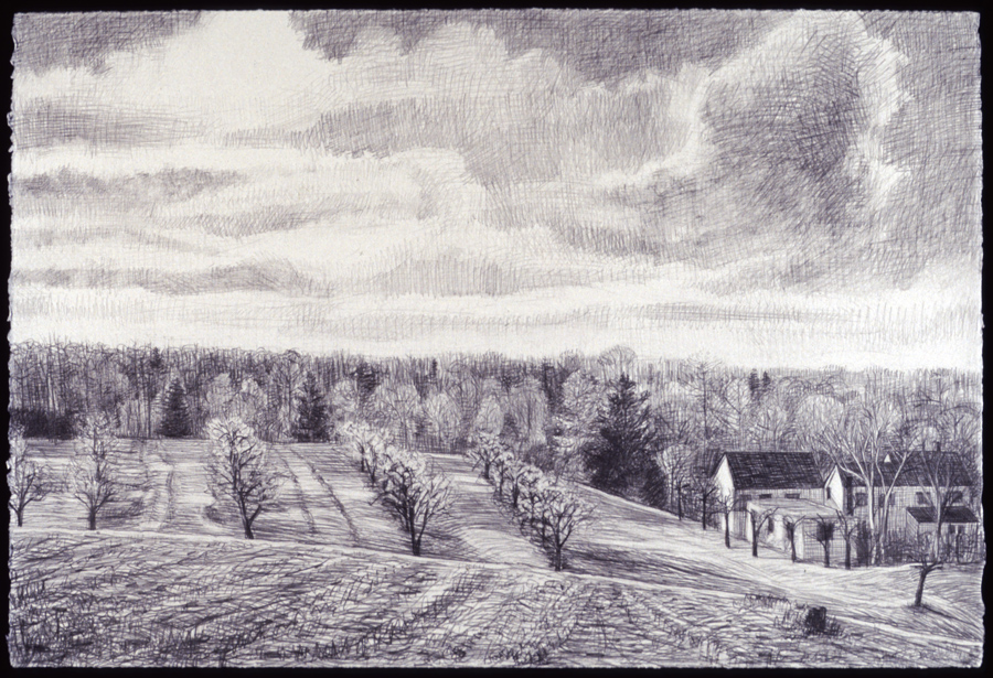 "Orchard with Houses   Pencil, 15x22"", 1998"