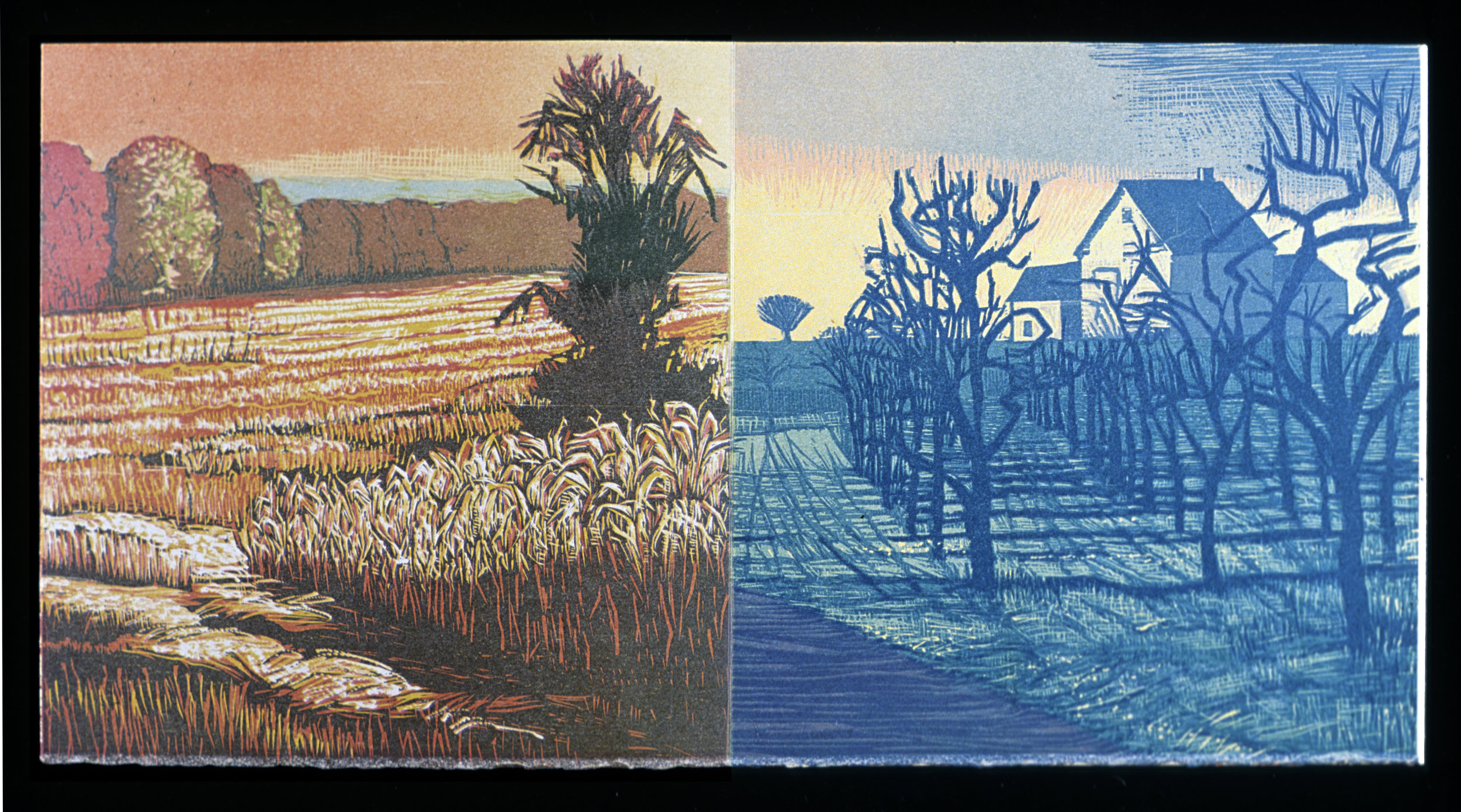 """Seventh and eight accordion panels  Color woodcut, 9 3/4 x 20"""""""