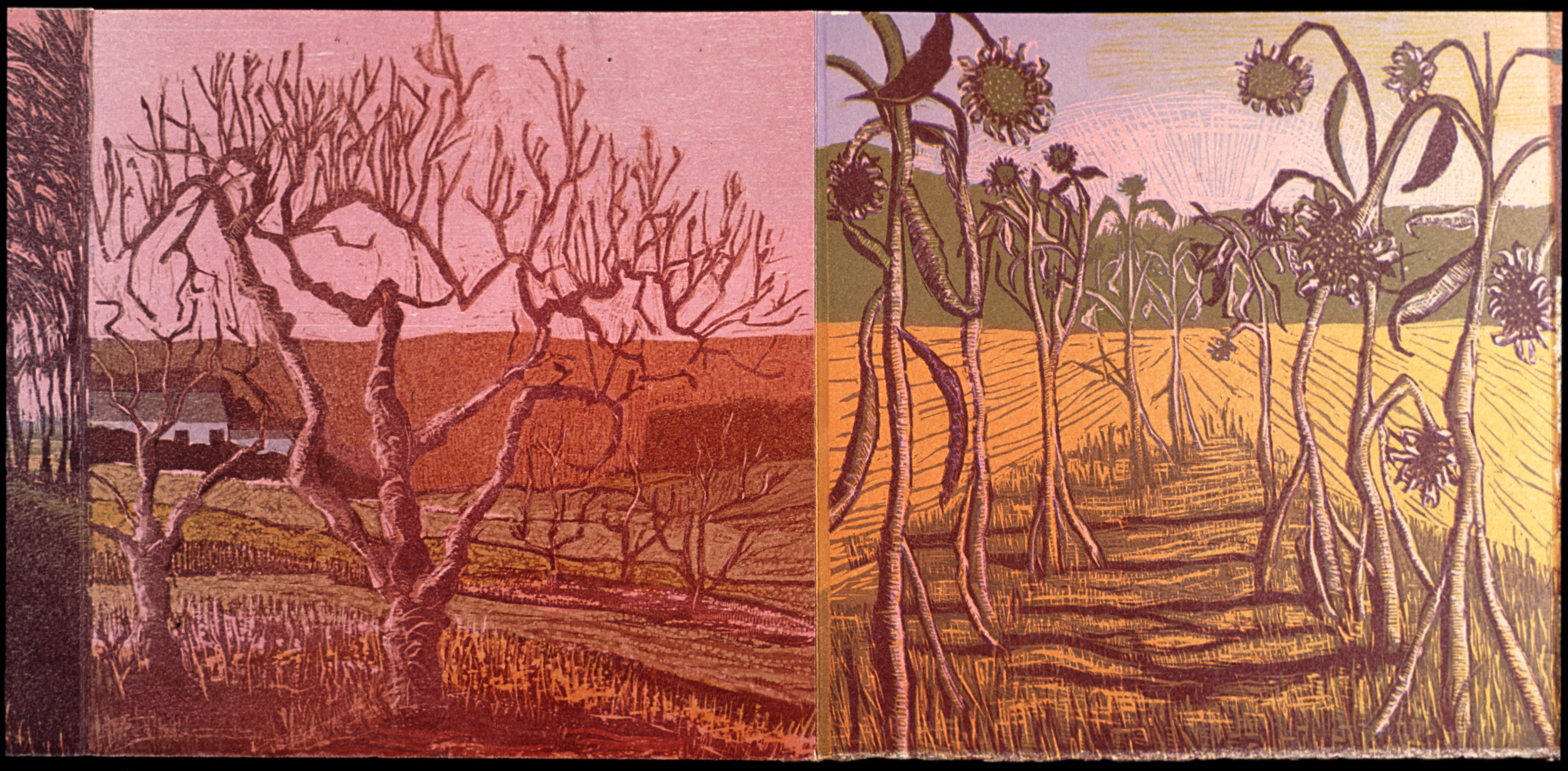 """Fifth and sixth accordion panels  color woodcut, 9¾x20"""""""