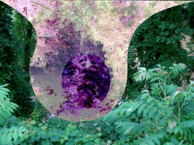 Forest Mammary 1.jpg