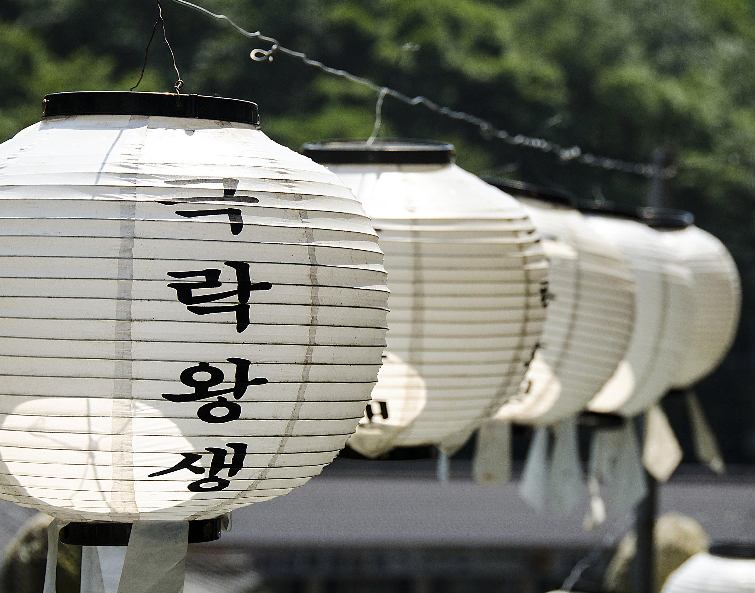 Spencer_Drake_Korean_Laterns_Photography_Travel_Paper_Lantern_Korean_White_Buddhist_Temple.jpg