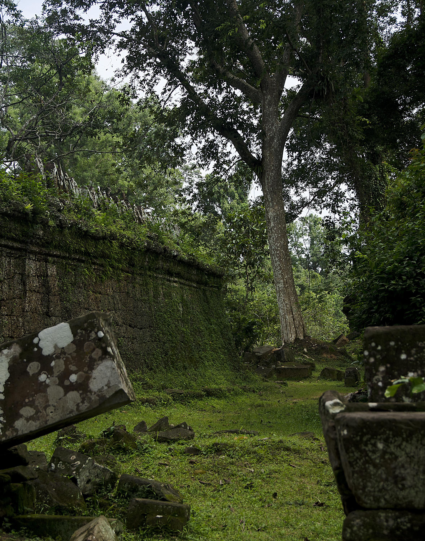 Spencer_Drake_Lost_History_Photography_Angkor_Wat_Travel_cambodia_ruins_jungle_green_nature_architecture.jpg