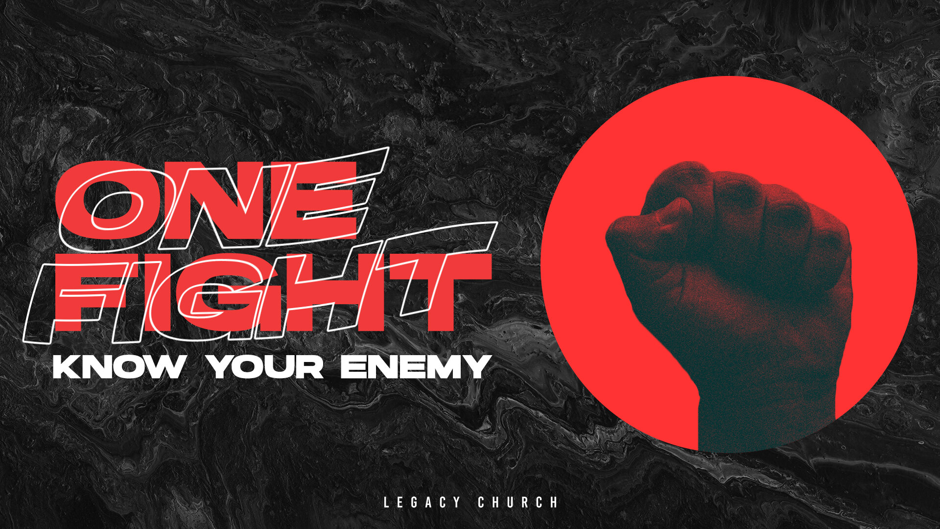 ONE FIGHT KNOW YOUR ENEMY.jpg