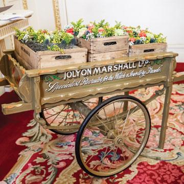 Joylon-Marshall-image Cart.jpg