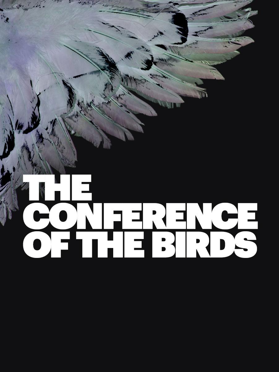 BirdConference_Portrait.jpg