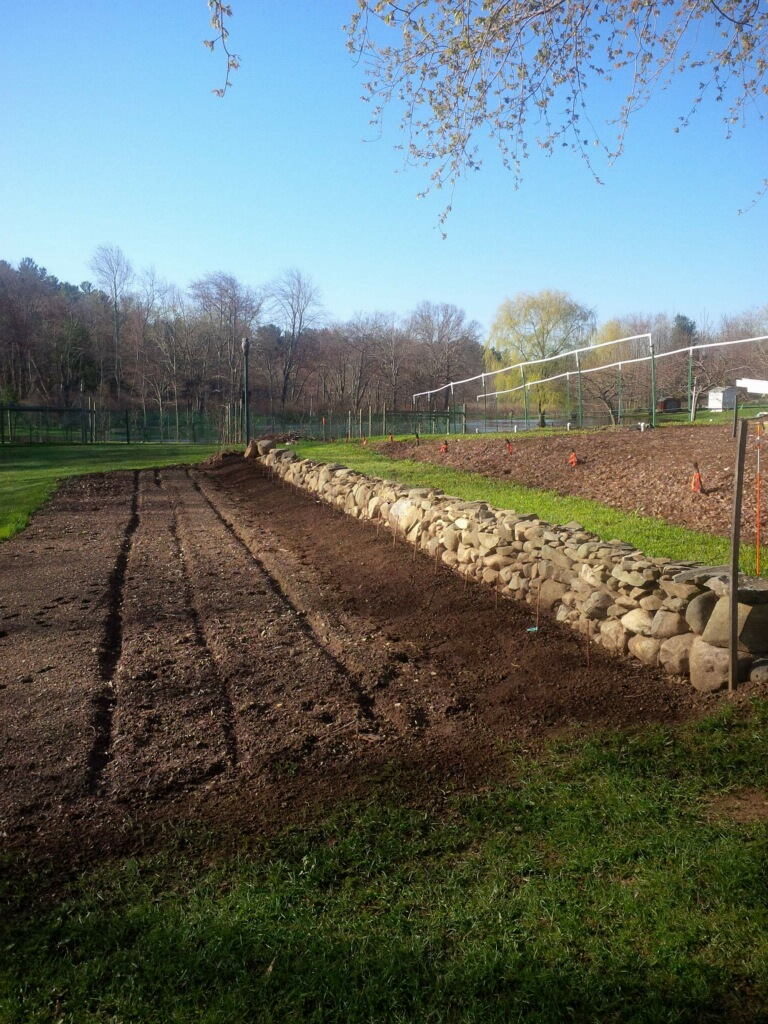 Before, During and After of a new Rock Wall, Raspberry and Veggie Bed, and Grape Trellis -