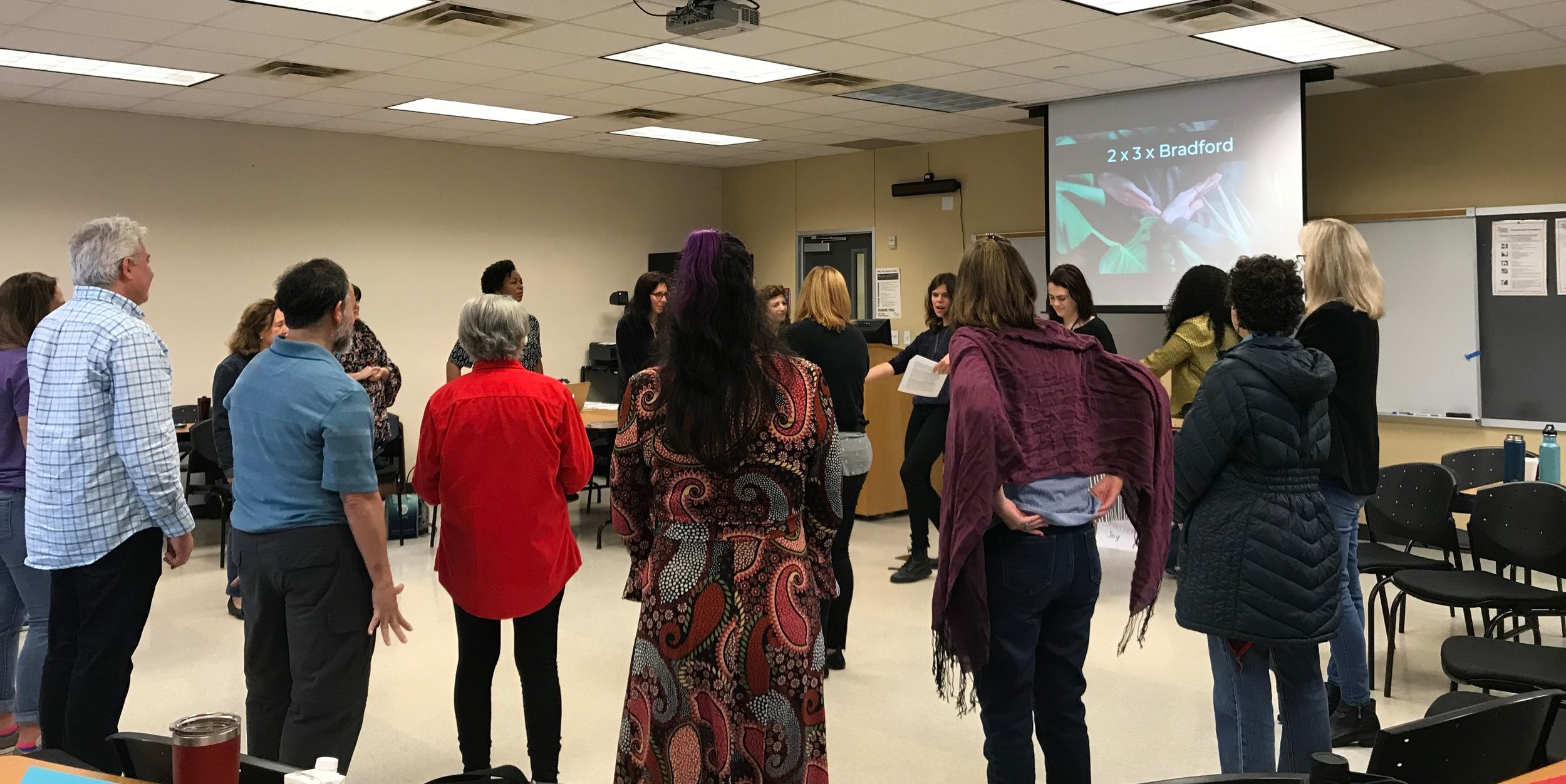 Activating Learning Through the Arts (Austin Community College)    Link to Sample Curriculum: Improvisational Drama for ELL Classrooms