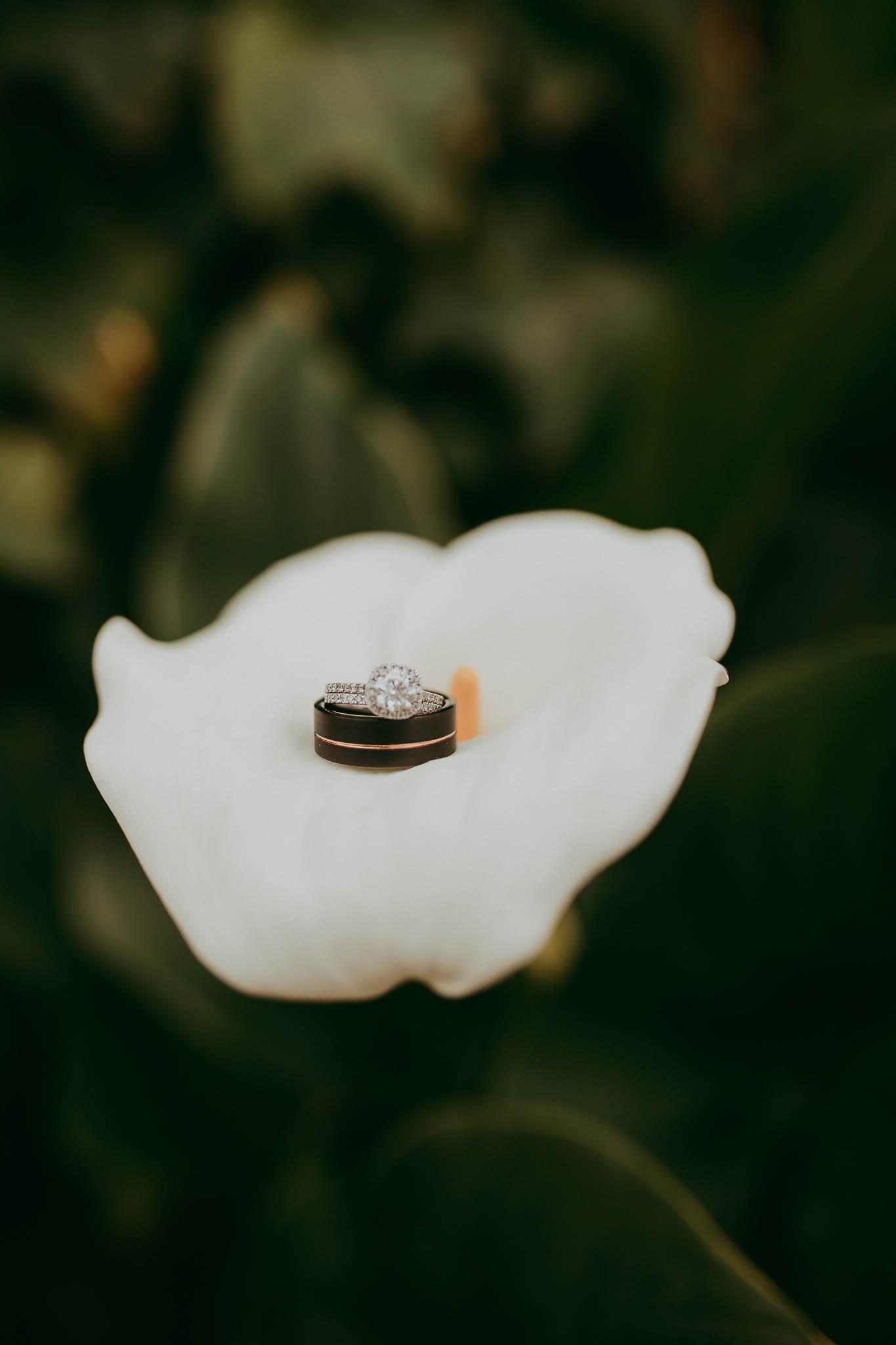 reynolds wed- blog (35 of 174).jpg