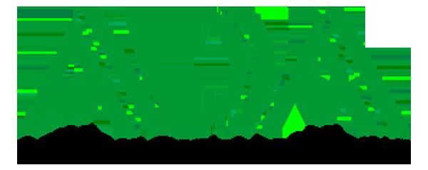 original_ada-logo.png
