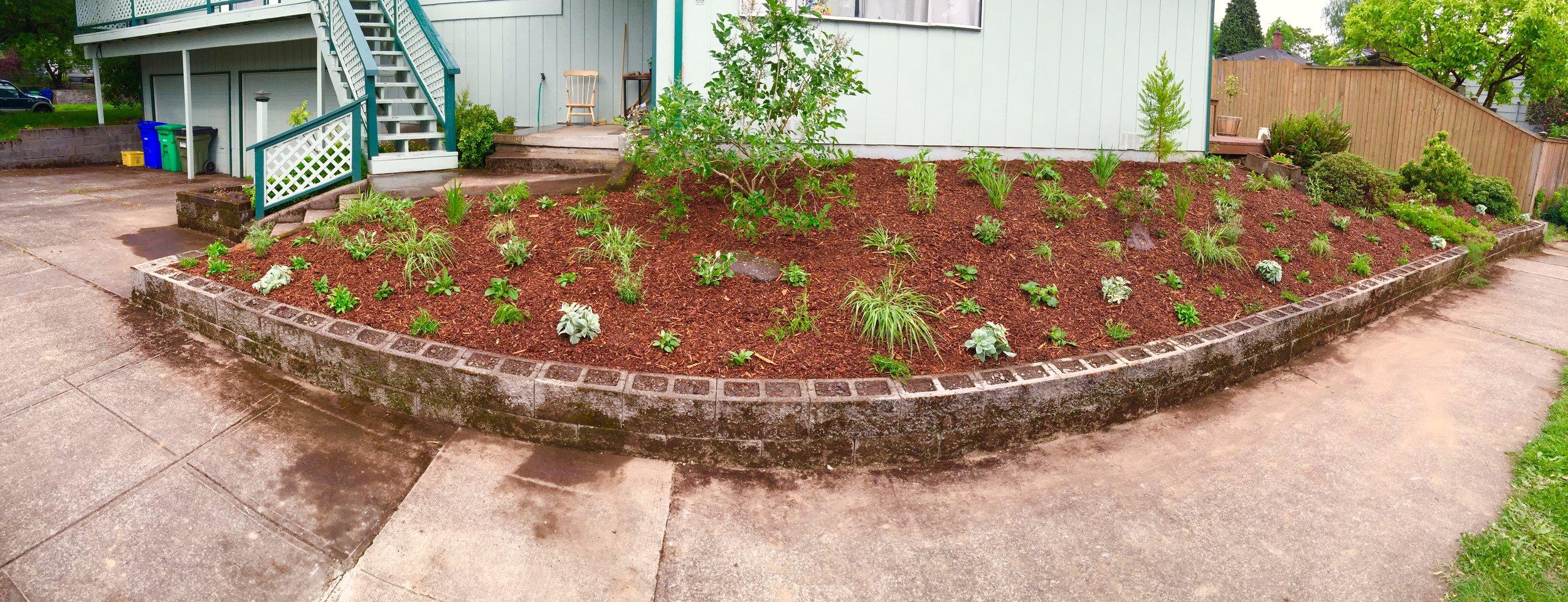 May planting