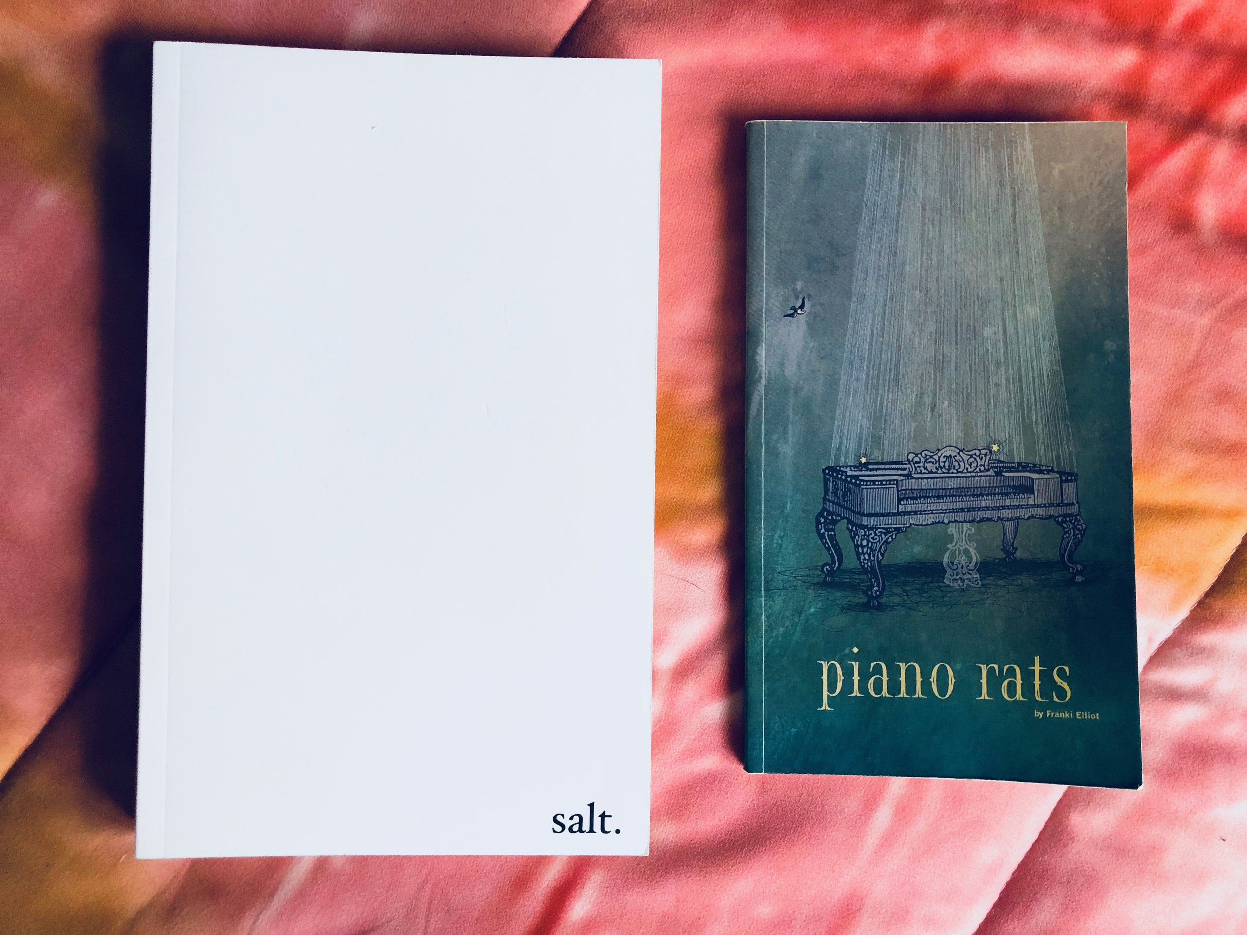 May's Book - 'Salt,' by Nayirrah Waheed & 'Piano Rats,' by Franki Elliot