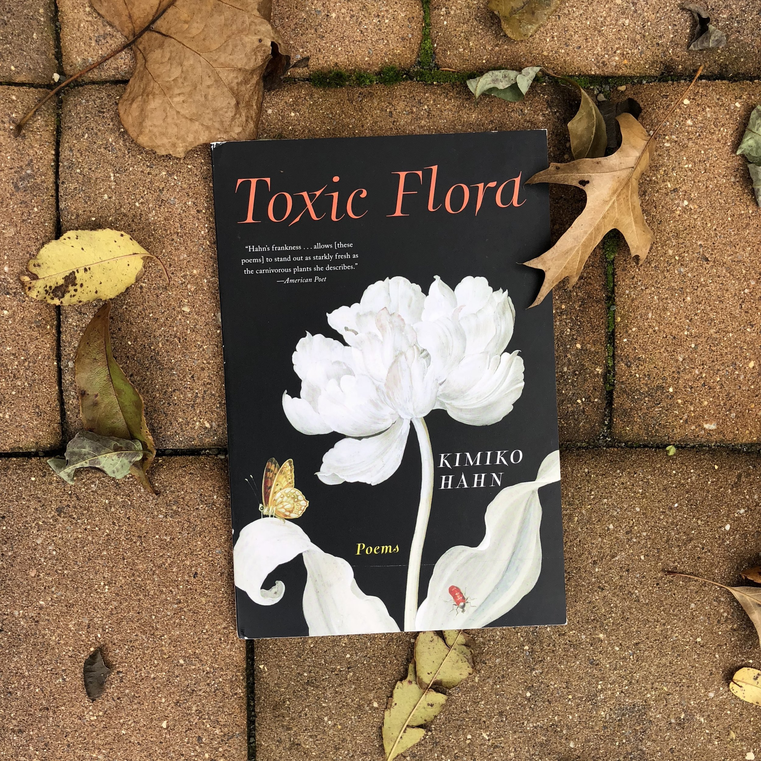 'Toxic Flord' - By Kimiko Hahn