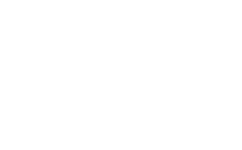 Skills-Logo-white-500px.png