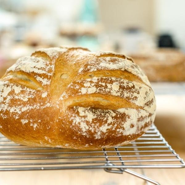 Bread Baking Extravaganza.jpg