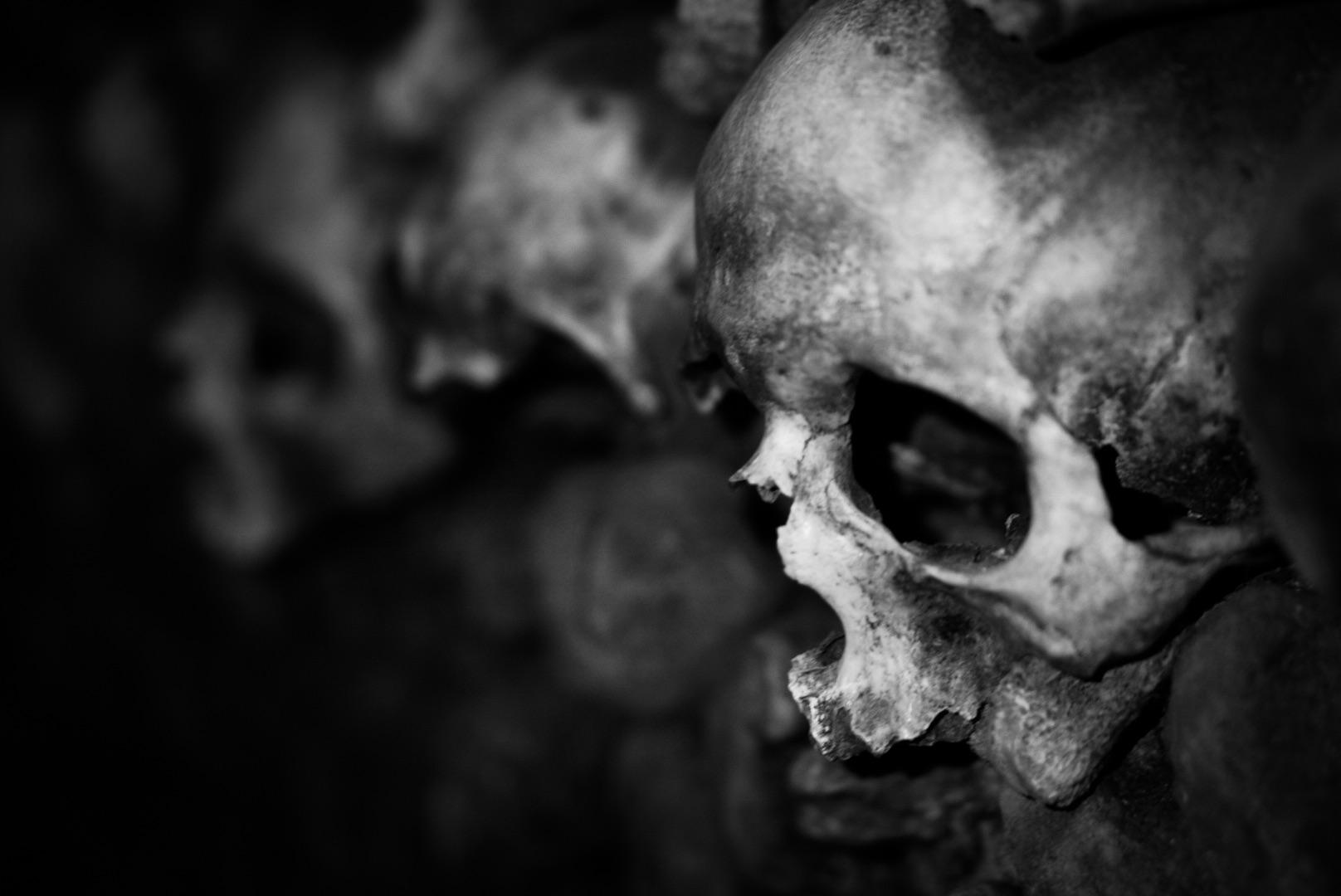 Skull 3 bw.jpg