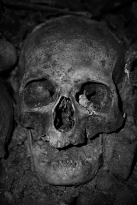 Skull bw.jpg