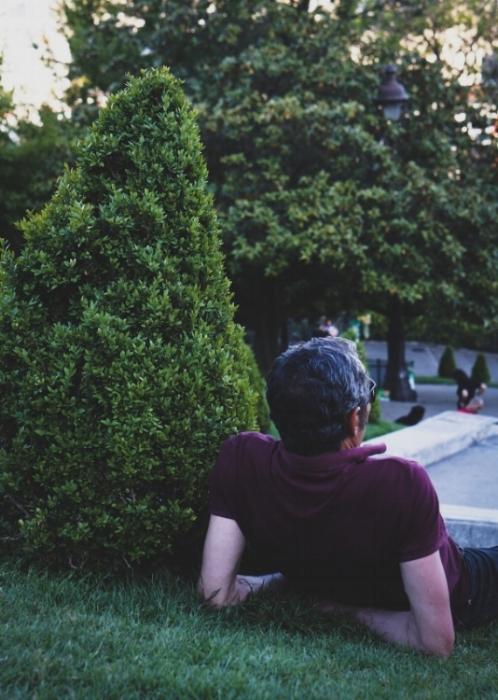 Dating a fern.jpg