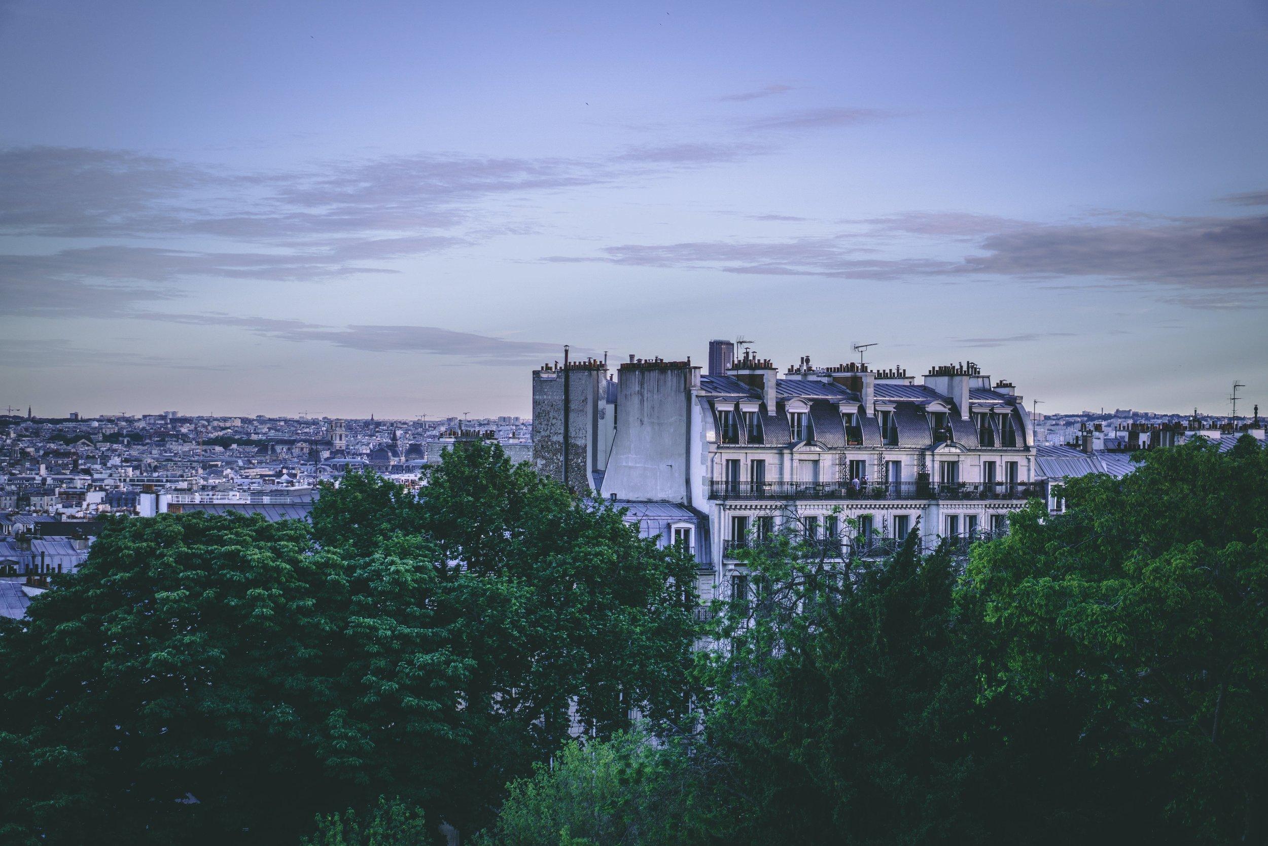 House on trees.jpg