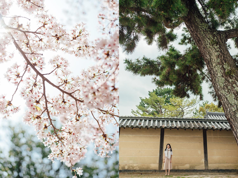 Japan (4).jpg