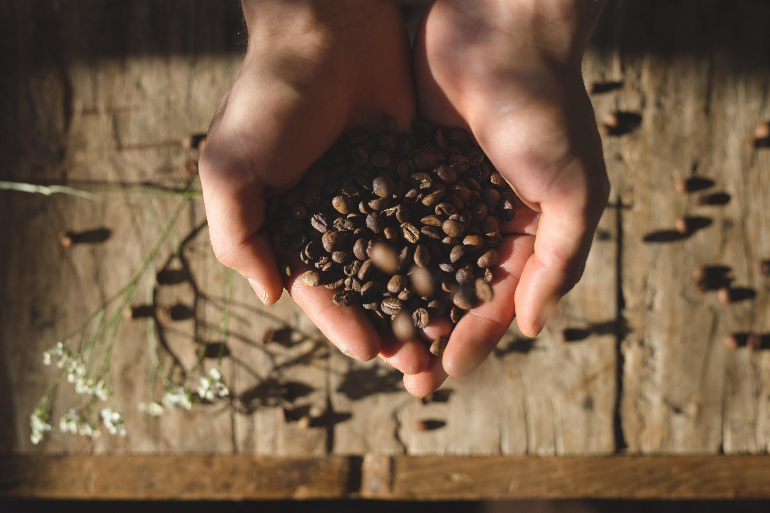 sans for kaffe 9