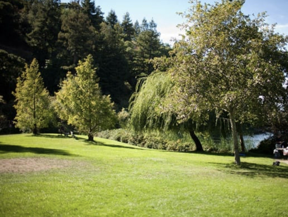 Lake Temescal Regional Park - Oakland, CA - Located between the Berkeley Hills and Oakland border, the beautiful Lake Temescal is a serene urban oasis surrounded by over 40 acres of gorgeous trees, hiking trails and a beautiful beach.6500 Broadway Ave. Oakland, CA 94618Landvale Site - North Entrance6502 Broadway Terrace Oakland, CA 94618Big Rock Site - South Entrance