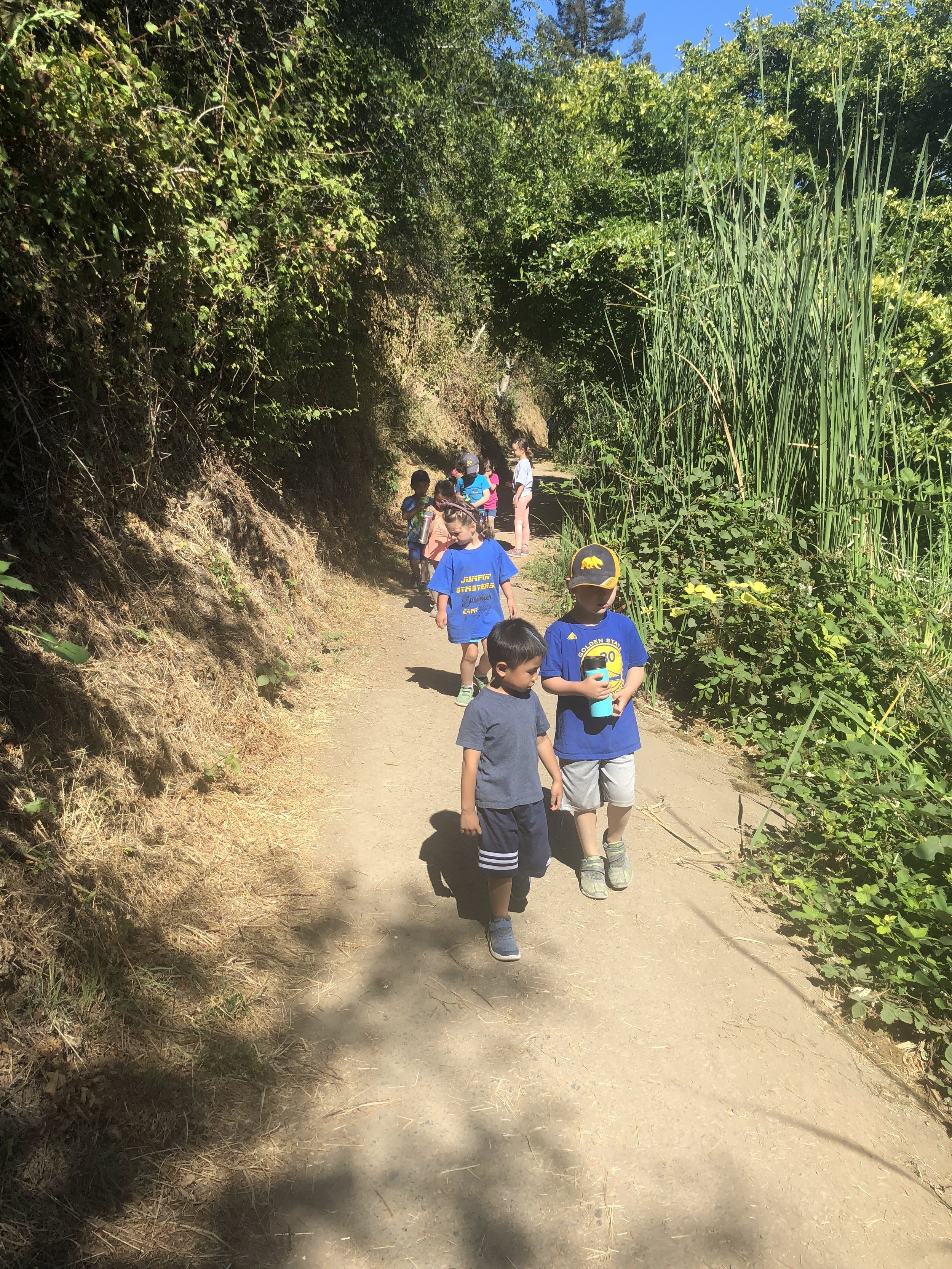 Trails and Outdoor Adventures - Explore the beautiful trails of Lake Temescal Regional Park. Hiking and exploring the various trails and discover living creatures that call Lake Temescal home.