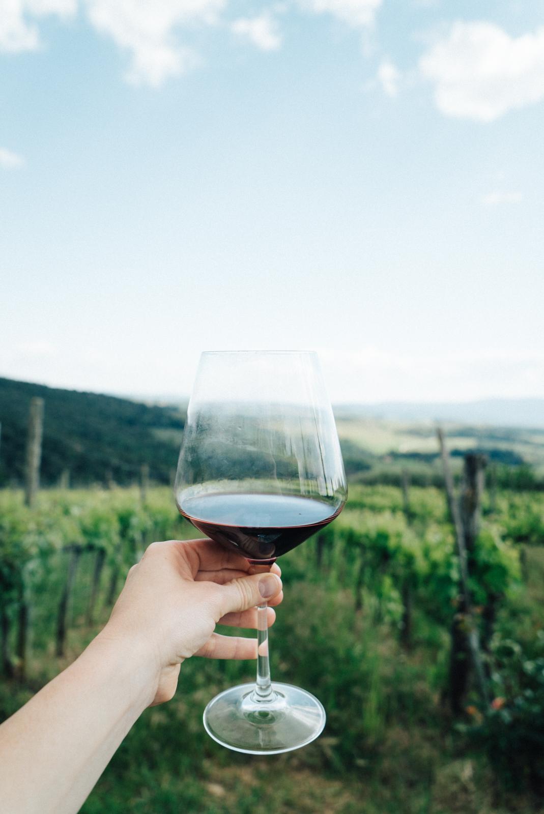 best vineyards in tuscany