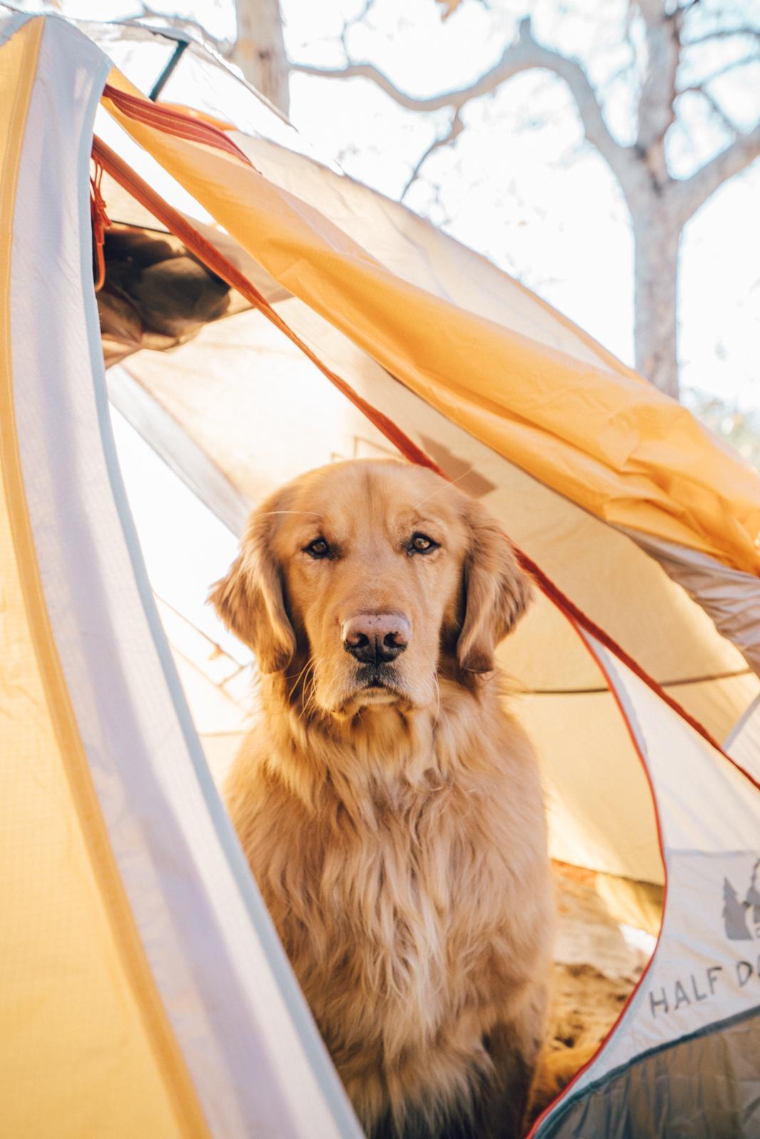 leo carillo camping california