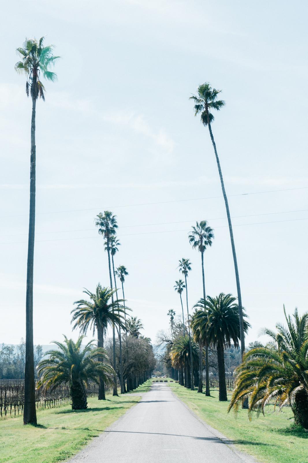 california travel guide