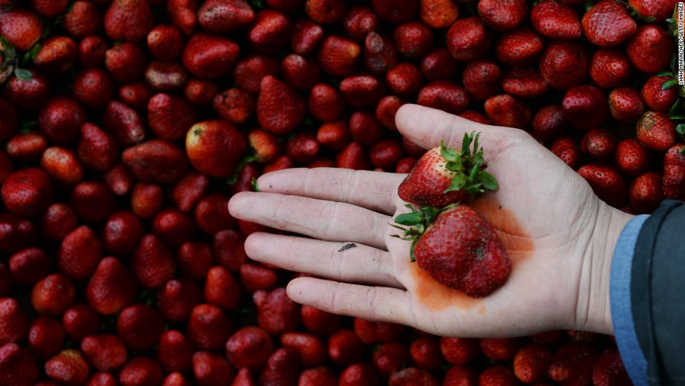 Photos:The 2017 'Dirty Dozen'  Every year, the Environmental Working Group publishes its  Dirty Dozen list, naming the fruits and vegetables that rank highest in pesticide residue. This year, strawberries remained at the top of the list; a single sample of strawberries showed 20 pesticides.