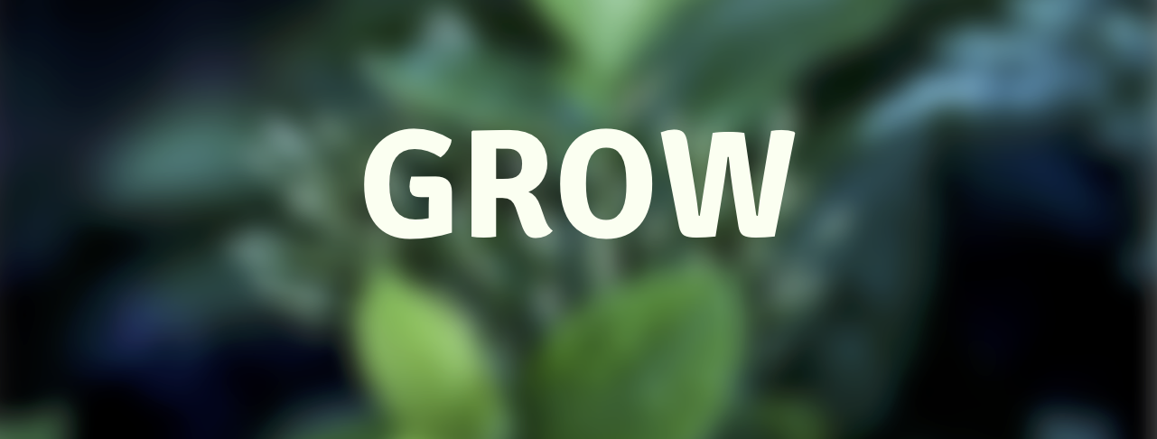 Grow powerpoint banner size .png