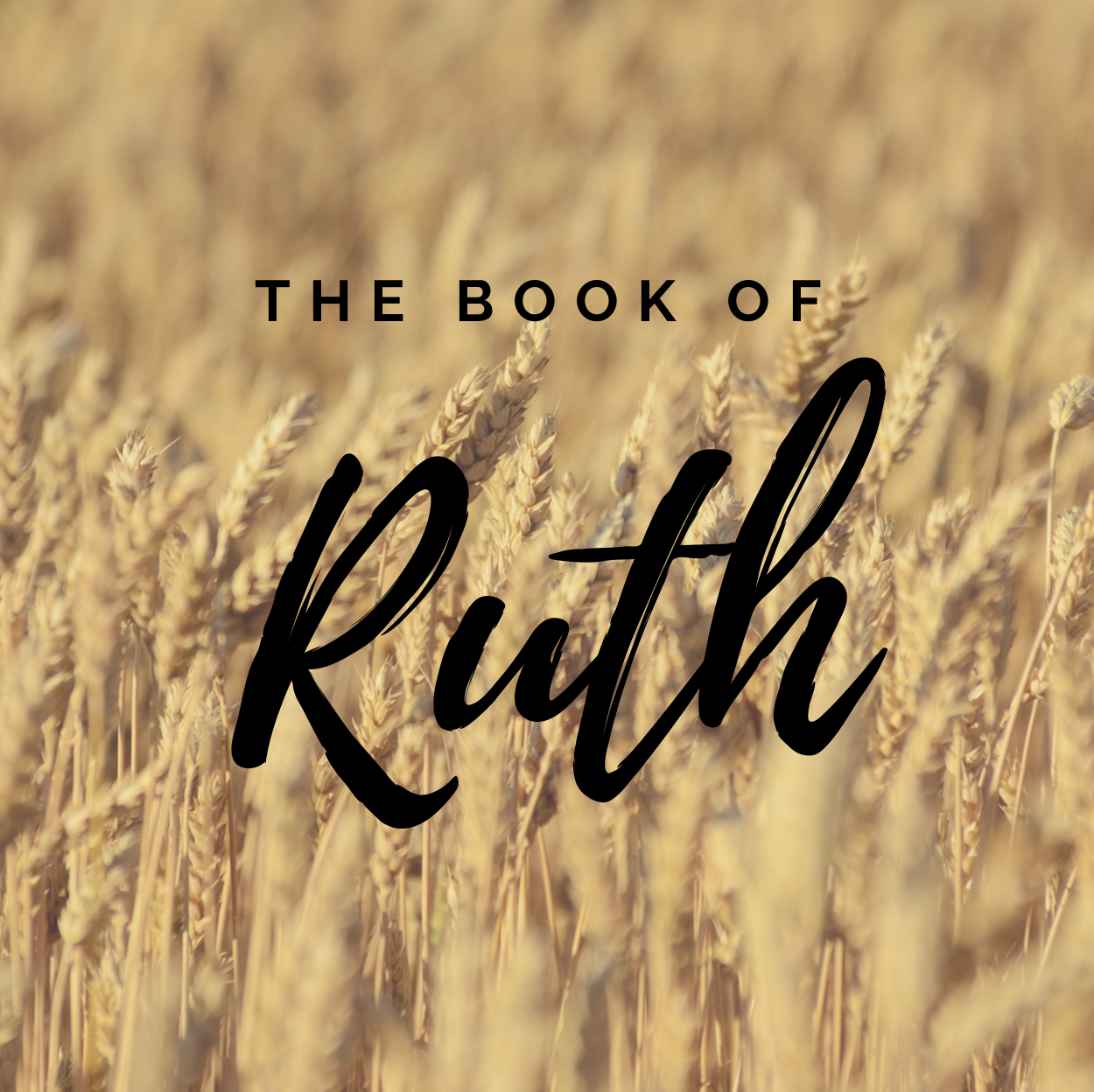 Ruth graphic IG.png