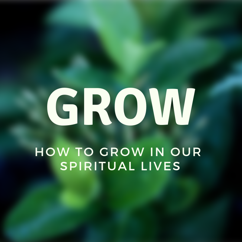 Grow with subtitle IG.png