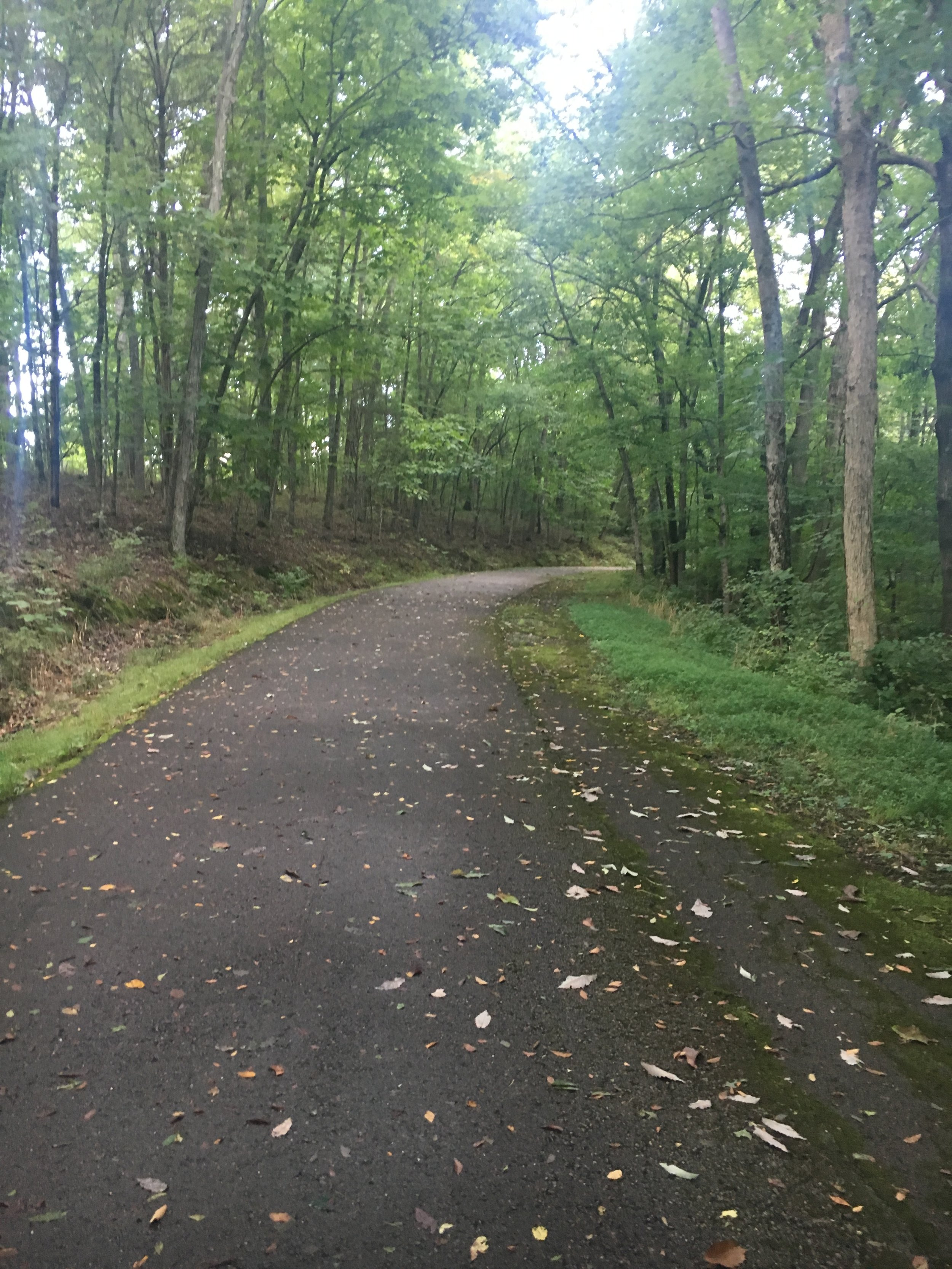 Edwin and Percy Warner Parks. Over 3,000 acres of perfect nature!