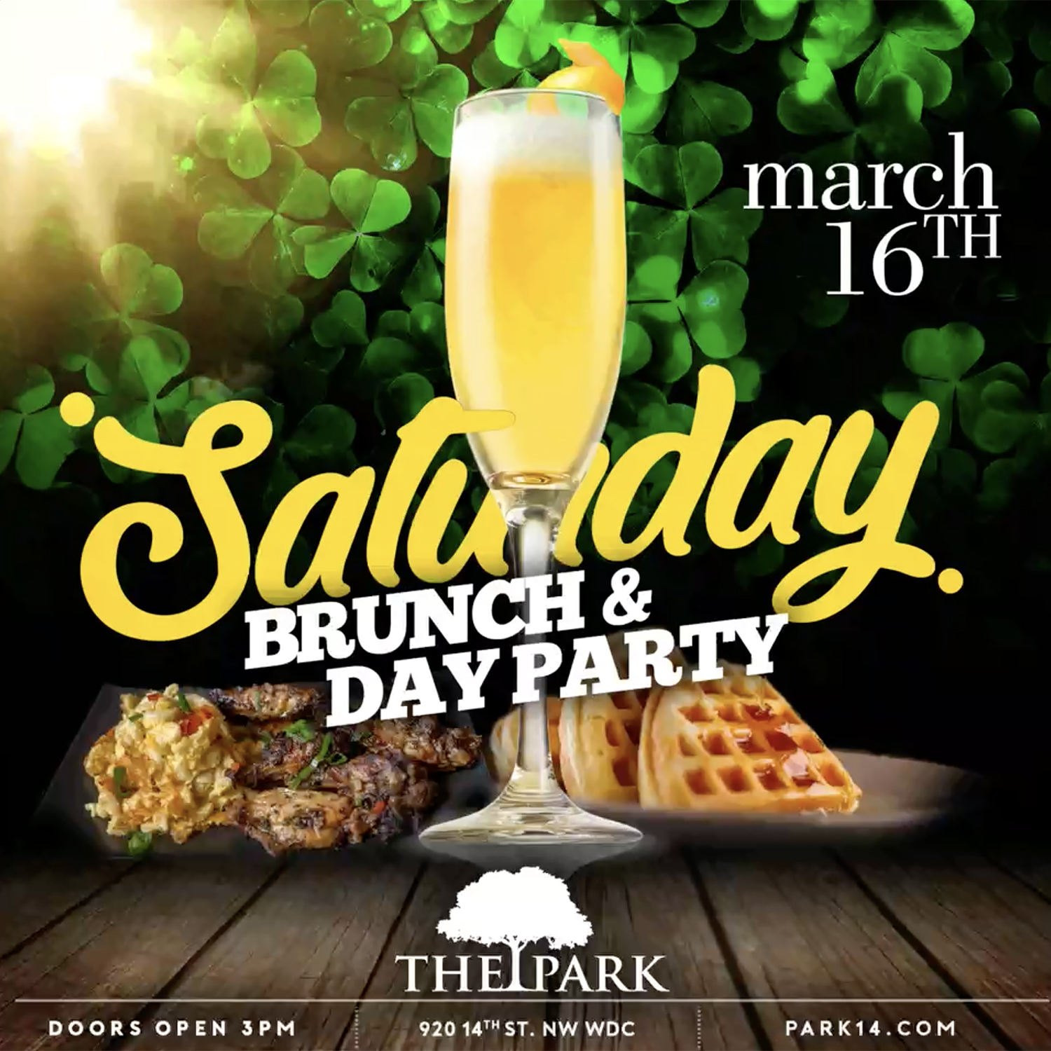 Brunch and Day Party Flyer.jpg