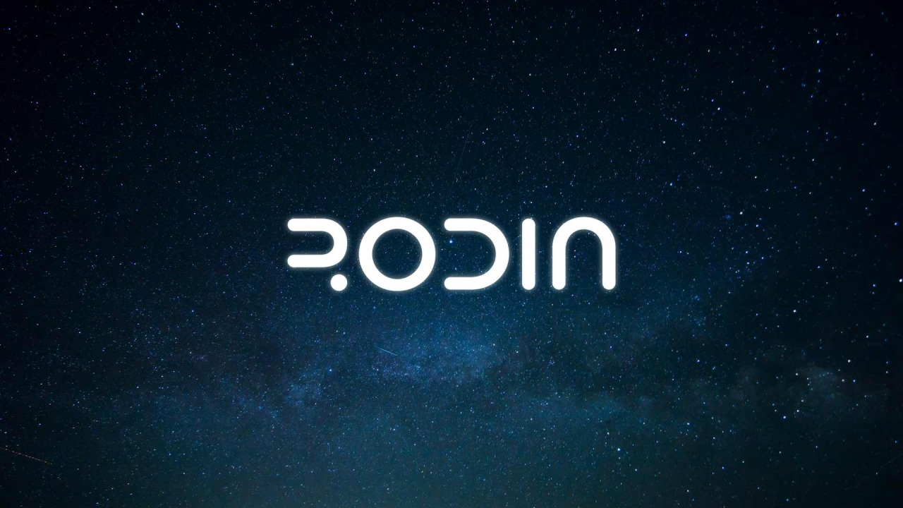 rodin logo.jpg