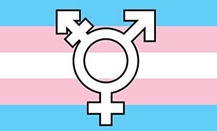 trans icon.jpg