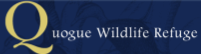 Quogue Logo.png