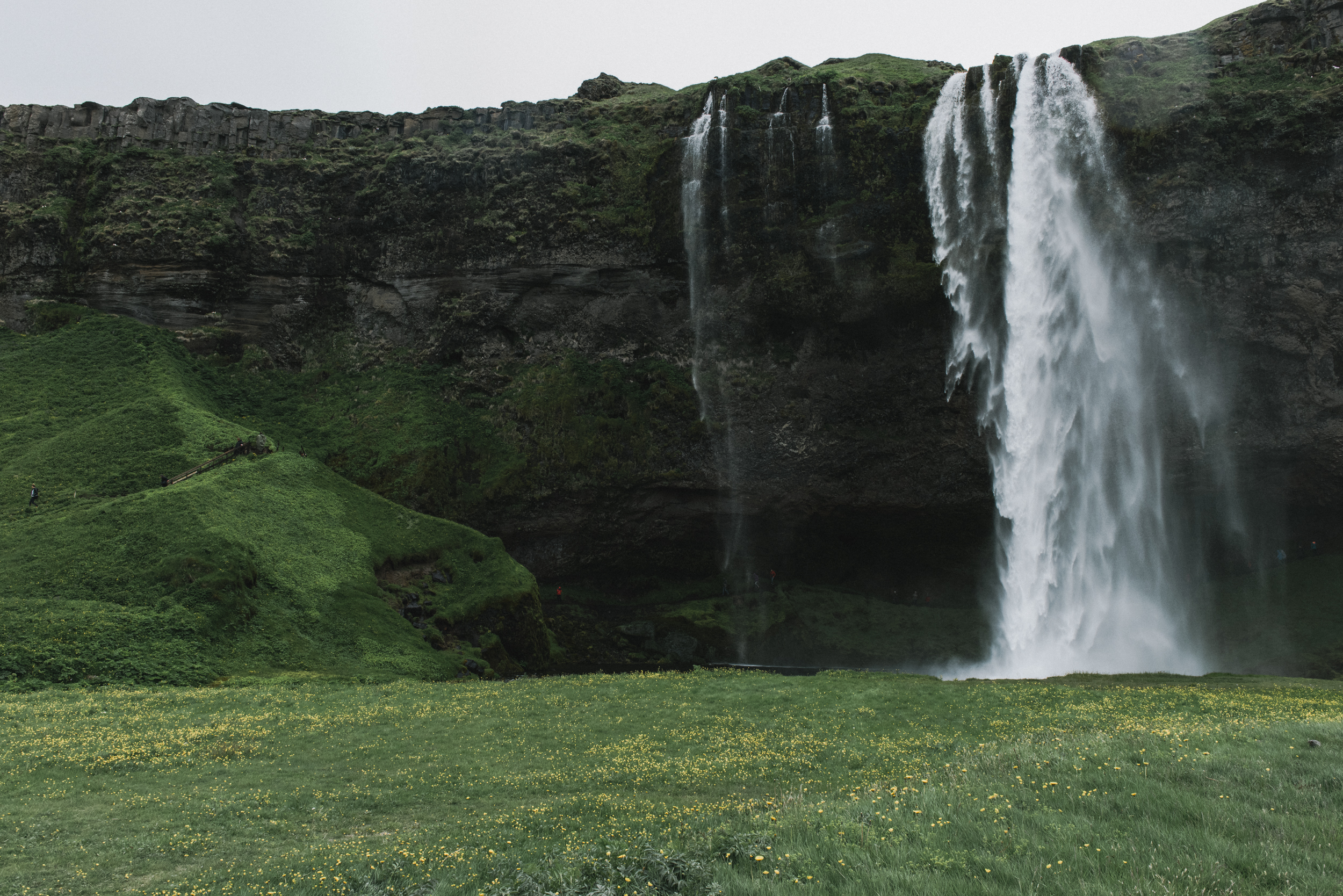BexarGoods_Iceland_4868.jpg