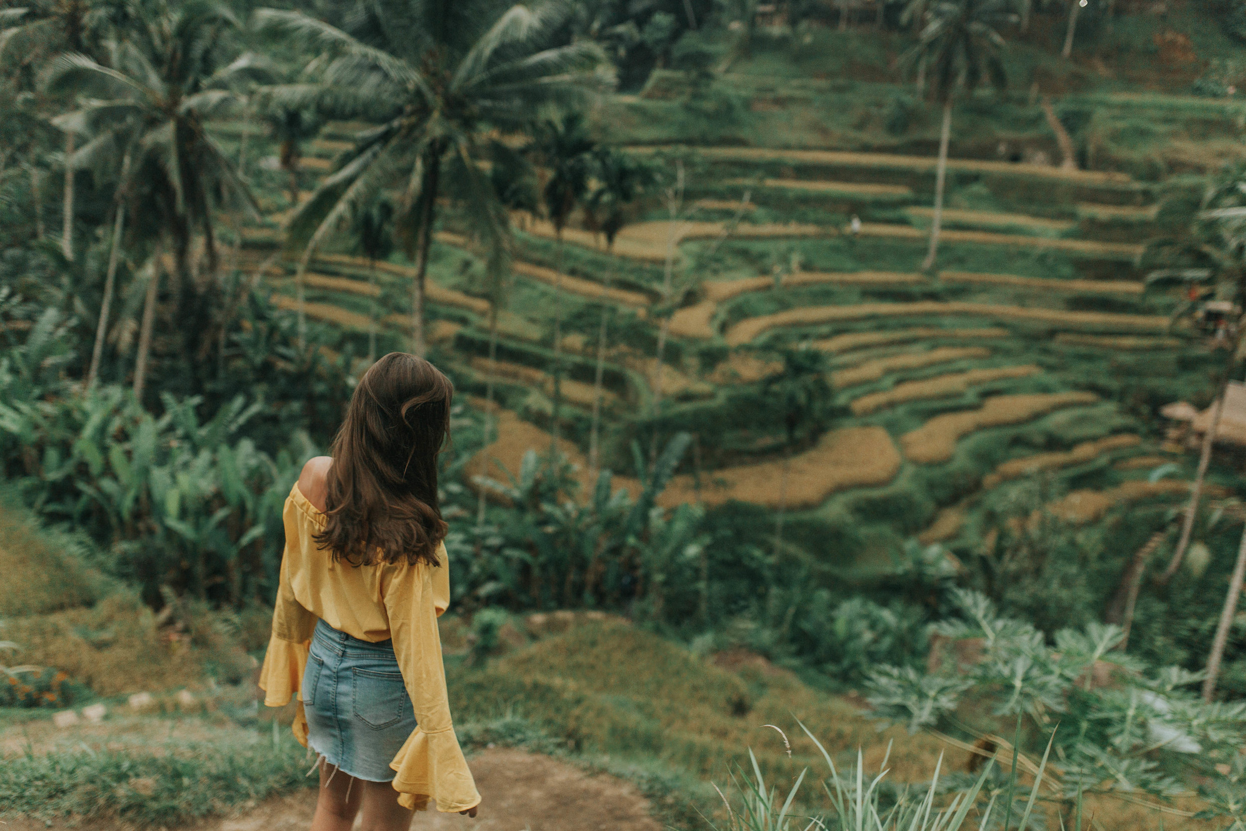"""Don't worry, Tegalalang Rice Terrace is a """"do""""."""