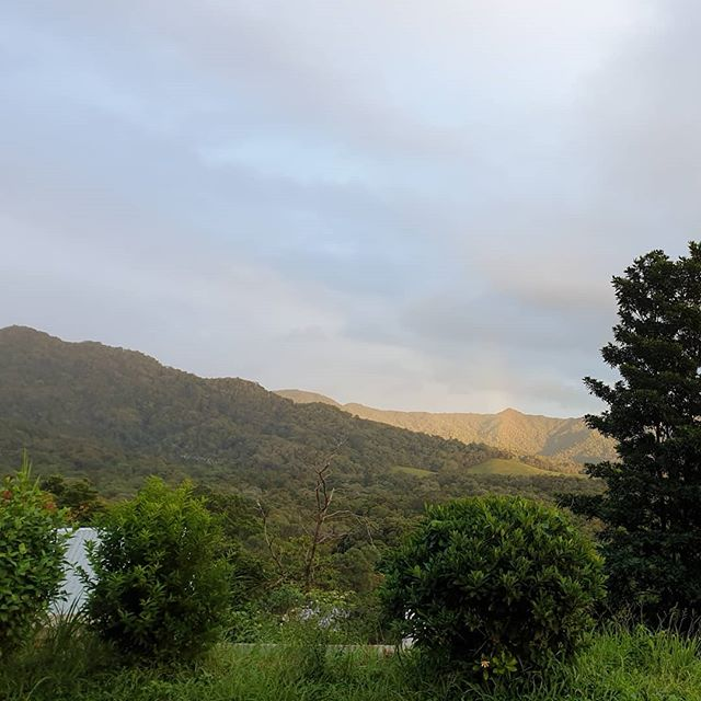 Morning sun over the Daintree# Wompoo Eco Retreat # accommodation # Daintree Marketing # winter holidays