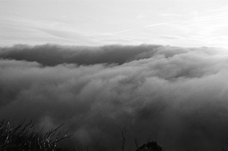 Aaron Shum Photography Film_-31.jpg
