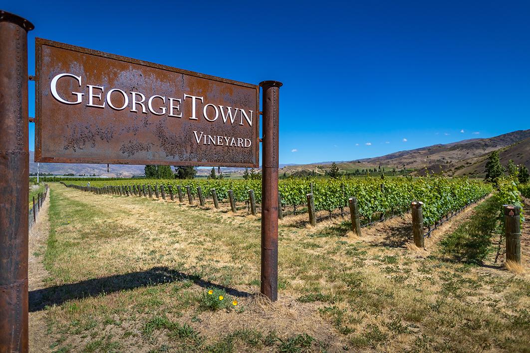 Georgetown Vineyard-28.1.jpg