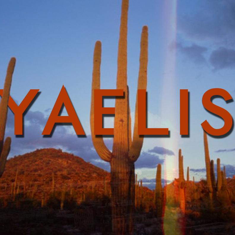 YAELIS logo.png