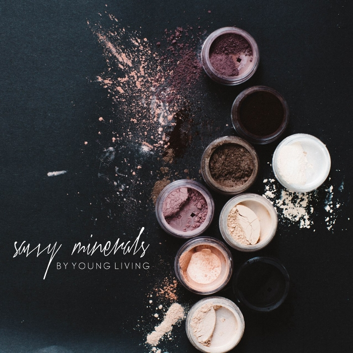 THE SAVVY MAKEUP KIT  -  LAUNCHES FEBRUARY 1st!