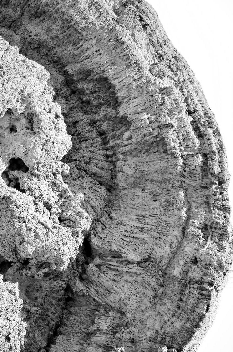 Generations of thinolite crystals  by Barbara Matthews.png