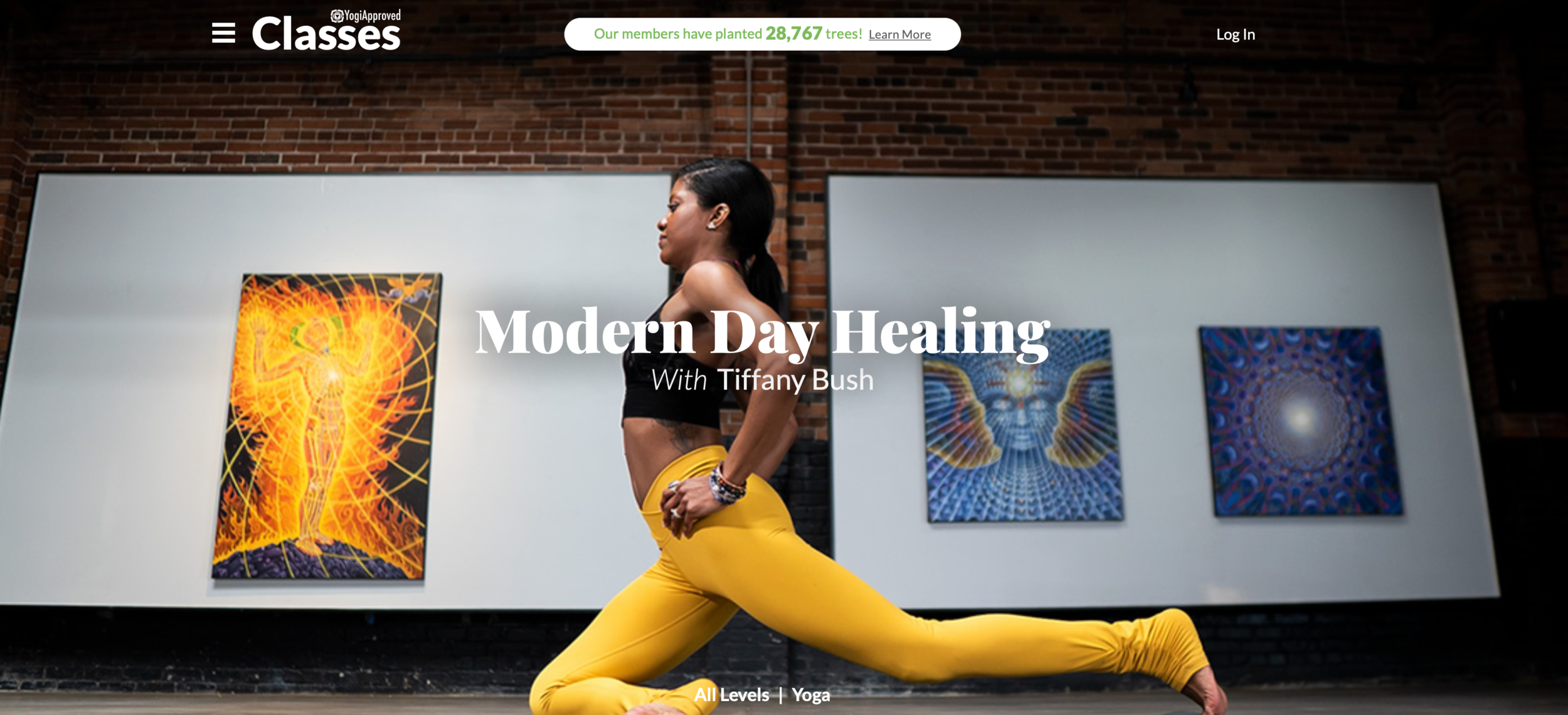 It is estimated that we spend over 11 hours  per day  on our screens. In today's technological age, most of us spend a lot of time typing, texting, and sitting. These repetitive motions lead to bad posture, chronic pain, and even decreased energy levels. Modern Day Healing is designed to help reverse the negative effects of our sedentary lifestyle. This program is also ideal for anyone who spends a lot of time on their feet. Practice yoga poses, stretches and movements that will help decrease pain, prevent injury, and increase mobility. Get ready to feel good!  5 Classes | 1hr 55min
