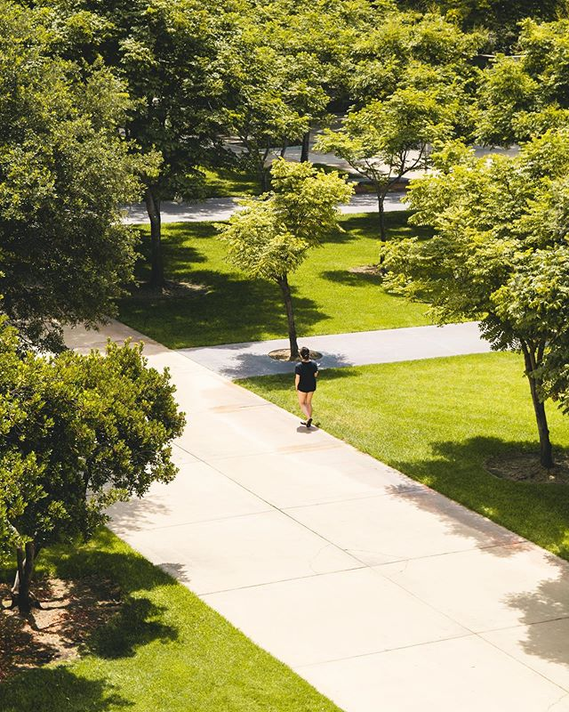 What's your favorite way to get around campus? 🚲🌳🏫