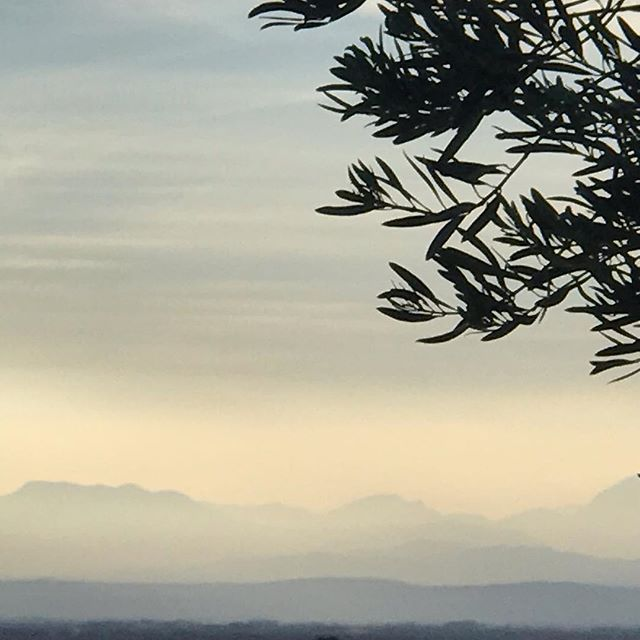 #rest #contemplating #contemplate #breathe #soupir #sigh #restore #rebalance #renew #parasympatheticnervoussystem