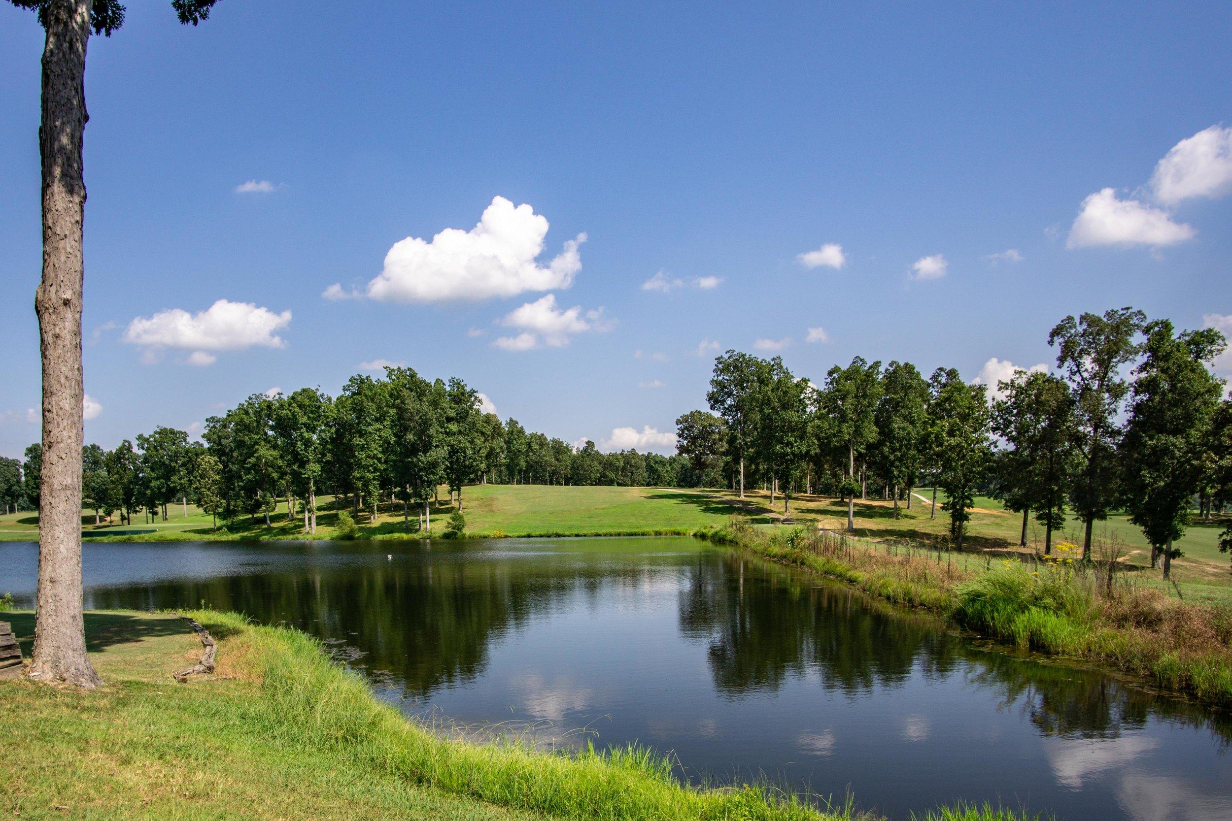 Dixie Oaks Golf Club Summertown TN Real Estate Photographer Pro -6.jpg